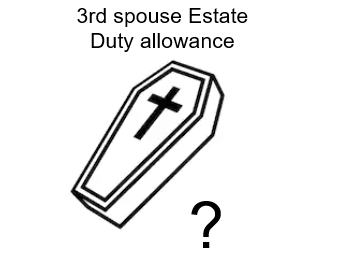 What happens to the Estate Duty allowance if a spouse re-marries?