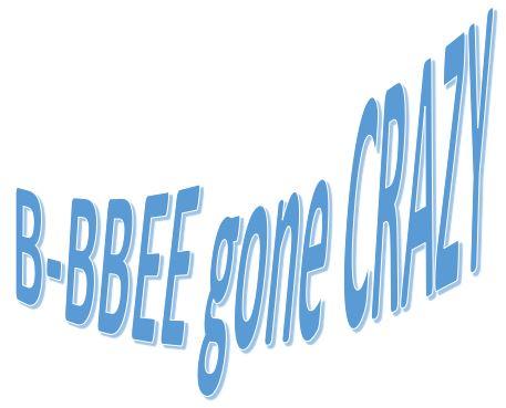 New B-BBEE Affidavit