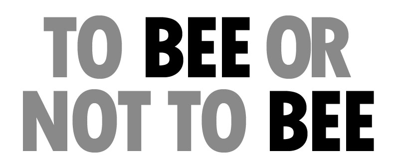 Who is Black for BEE?